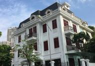 Biệt thự đẳng cấp nhất tại Hà Nội, mà quý khách đang tìm kiếm bấy lâu nay, LH Mr Đại 0997514284