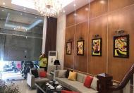 Bán nhà cực đẹp ô tô Đống Đa, phố Phạm Ngọc Thạch, 43m2, 5T, chỉ 4.95 tỷ