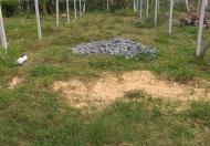 Chính chủ bán gấp lô đất 2 mặt tiền gần ngã 4 Tân Quy, Củ Chi, SHR, GPXD, liên hệ 0969897753