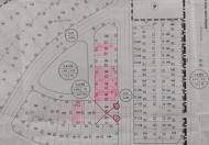 Bán đất biệt thự Làng Quốc Tế Việt Kiều, Hải Phòng, DT 204m2, ngang 10m, giá 24 tr/m2