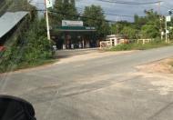 Bán 4,007.5m2 đất tại đường Tăng Thị Hội, An Nhơn Tây, Củ Chi, TP. HCM