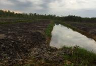 Bán 5ha đất làm trang trại tại xã Thái Mỹ, huyện Củ Chi, TP. HCM