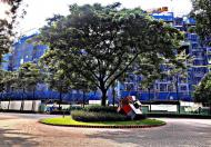 Bán gấp căn 2PN 2WC block B khu Emerald Celadon City Tân Phú, chênh lệch thấp