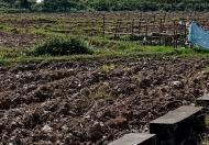 Chỉ còn 4 lô đất đấu giá khu TĐC Quang Tiến, Sóc Sơn, gần sân bay Nội Bài, từ 7tr/m2