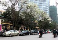 Cần bán nhà mặt phố Trần Hưng Đạo, giá 51 tỷ, hiện đang cho thuê giá cao, lh 0963044045