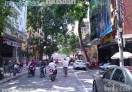 Cần bán mặt phố Triệu Việt Vương, DT 163m2, MT 7m, xây 11 tầng lh 0963044045