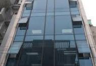 Bán tòa nhà 8 tầng Hồ Hảo Hớn - Trần Hưng Đạo, P. Cô Giang, Q. 1. DT 4mx16m, giá 30.5 tỷ