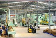 Cho thuê 800m2 kho xưởng tại KCN Bình Xuyên - Vĩnh Phúc. DT tổng 5000m2