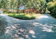 Cần tiền bán gấp đất thổ cư giá rẻ tại Trảng Bàng, Tây Ninh
