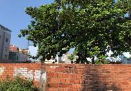 Bán đất MT sông Sài Gòn, P.5, Gò Vấp: 27 x 57, giá: 129 tỷ