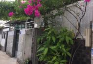 Cần tiền bán gấp nhà và dãy nhà trọ Huỳnh Tấn Phát Nhà Bè