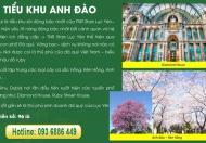 Bán đất trung tâm thị trấn yên thế giá chỉ từ 8tr/m2 LH 0846 310 969