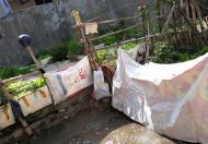 Bán đất tại ngõ 19 Tả Thanh Oai, Thanh Trì, Hà Nội diện tích 32.5m2 giá 690 Triệu giá quá hợp lý