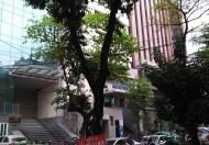 Bán nhà mặt phố Nguyễn Đình Chiểu, Bà Triệu, Hai Bà Trưng. 31/35m, MT:8m, 13.9 tỷ (0961059389)