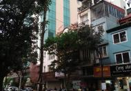 Bán nhà MP Nguyễn Đình Chiểu, HBT, diện tích 35m, mặt tiền 8m, giá 13.9 tỷ