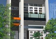 Cần bán nhà gấp 42 m2 Đinh Bộ Lĩnh - Bình Thạnh.