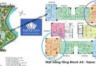 Cần bán nhanh căn hộ Topaz City A1 DT 95.57m2 3PN 2WC giá tốt nhất thị trường hiện tại