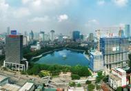 Suất ngoại giao siêu đẹp dự án BRG Oriental 16 Láng Hạ: LH 0989905589