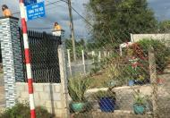 Bán 4,007.5m2 đất tại đường Tăng Thị Hội, An Nhơn Tây, Củ Chi, TP.HCM