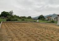 Chính chủ bán lô đất thổ cư sát cạnh KĐT Thống Nhất, DT 248,6m2, giá bán 16tr/m2