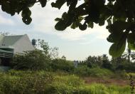 Bán đất đường Số 8, phường Long Phước, Quận 9, diện tích 1254 m2