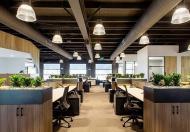 Chính chủ cần cho thuê sàn văn phòng tầng 1 tại phố Trung Yên 9, dt 120m2, mới, đẹp