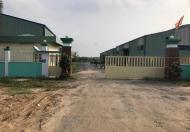 Cho thuê hoặc hợp tác mặt bằng kinh doanh, xưởng sản xuất gỗ mặt tiền QL22B, Gò Dầu, Tây Ninh