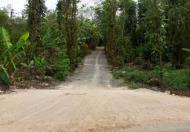 Bán 8000m2 đất rẫy Xã Thanh Bình, Đồng Nai