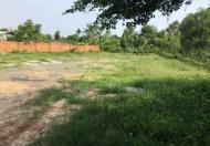 Cần bán lô đất đường Long Thuận, Q. 9, DT: 5600m2, đất vườn (có 200m2 đất thổ cư), 6.5tr/m2