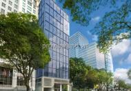 Bán tòa cao ốc văn phòng tại Quận 1 gần khách sạn New World 800m2 2 hầm 9 tầng