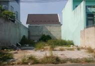 Chính chủ bán nhanh nền đất 52m2 tại Tân Bình, cam kết sổ riêng, XDTD, thổ cư 100%, khu dân trí cao