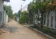 Đất 8x23m sổ hồng riêng, KP2 Phương Nam, Trảng Dài, Biên Hòa