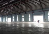 Cho thuê nhà xưởng tại Khu công nghiệp Thuận Đạo, Vĩnh Lộc 2, Bến Lức, Long An
