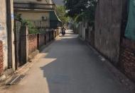 Bán đất Long Biên, gần chân cầu  Thanh Trì, 35m2, oto vào tận nhà, giá 1,3tỷ.