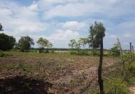 Cần bán đất 1300m2 Vĩnh Thanh, Nhơn Trạch, gần trung tâm giá tốt, sổ hồng riêng