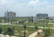 Chính chủ bán gấp biệt thự Thanh Hà- Hà Đông nhìn trường học giá rẻ