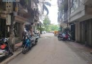 Bán Nhà Ngõ 28 Nguyên Hồng .KD Café, Văn Phòng . 42m2*4T. Giá 8.4 Tỷ