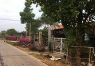 Chính chủ cần bán 4888m2 mặt tiền Xuân Đông được tách ra làm 4 sổ riêng, gần trường học, kdc an ninh,giá đầu tư 0868292939 Trưởng