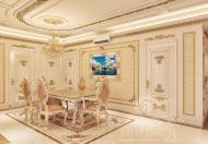 Cho thuê nhà biệt thự KDC Him Lam Kênh Tẻ Phường Tân Hưng Quận 7 LH Hải: 0903358996.