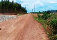 Nhanh tay sở hữu 1000m2 đất Bình Thuận chỉ có 290 triệu.
