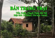 Chính chủ cần bán trang trại tại xã Tiến Xuân, Thạch Thất, Hà Nội