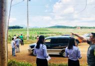 Cơ hội đầu tư đất nóng Bình Thuận chỉ từ 290 triệu / 1000 m2.