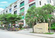 Độc quyền 4 suất ngoại giao Nhà vườn Pandora cuối cùng (có căn góc siêu đẹp), CK 2%, giá ưu đãi