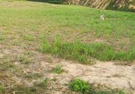Bán đất trang trại bằng phẳng 20.000m diên tân, diên khánh