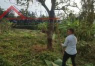 Bán đất chính chủ tại xã Lê Minh Xuân ,Bình Chánh  , HCM
