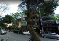 Bán nhà mặt đường phố Dã Tượng, quận Hoàn Kiếm S43m2x5t, vỉa hè rộng, KD tấp nập