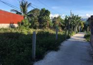 Cần bán 2 lô đất kền kề , xã Diên Lạc , huyện Diên Khánh , Khánh Hoà