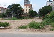 Cho thuê đất 460m2 kinh doanh mặt đường KĐT 31ha, Trâu Quỳ Gia Lâm