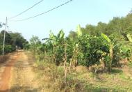 Chính chủ cần bán đất Xã Thừa Đức, Huyện Cẩm Mỹ, Đồng Nai