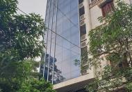 Bán toà nhà mặt phố An Trạch, Cát Linh, 93m2,11 tầng thang máy, 30 tỷ.